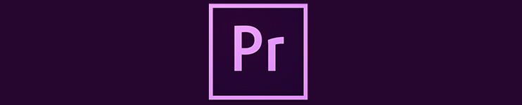 how to include multiple videos in premiere pro