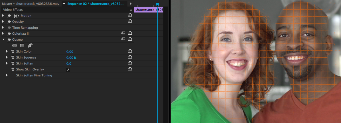 Color Grading Without a Precisely Calibrated Monitor: show skin overlay