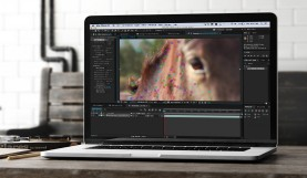 plug-ins and After Effects CC 2015 (13.5) | Creative Cloud ...