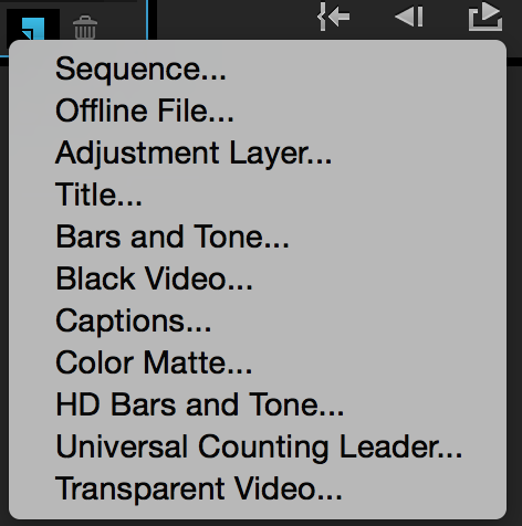 Different Ways to Move Video Onto Your Premiere Pro Timeline: New Item
