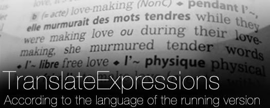 Translate Expressions - AE Script