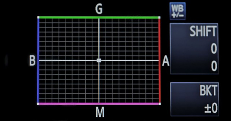 White Balance Grid