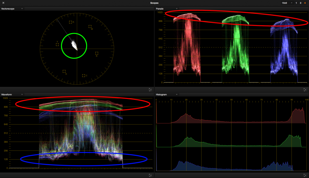 look 3 - reference scopes circled