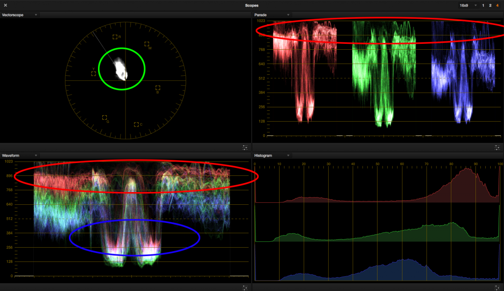 look 4 - reference scopes circled