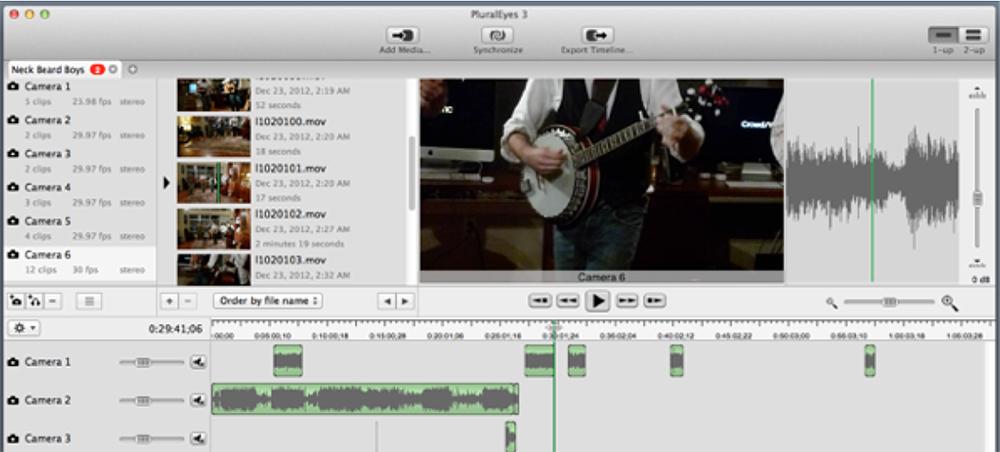PluralEyes Screenshot