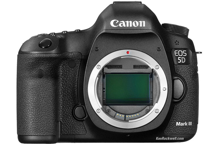 3 Best Low-Light Video Cameras Under $2,500: Canon 5D MKIII
