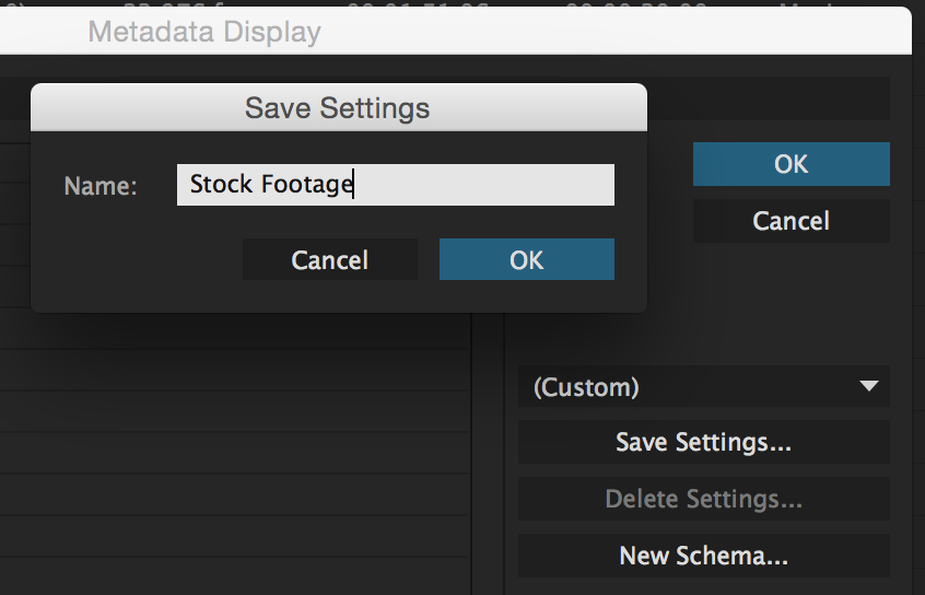 Unleashing the Power of the Premiere Pro Project Panel: Metadata Display