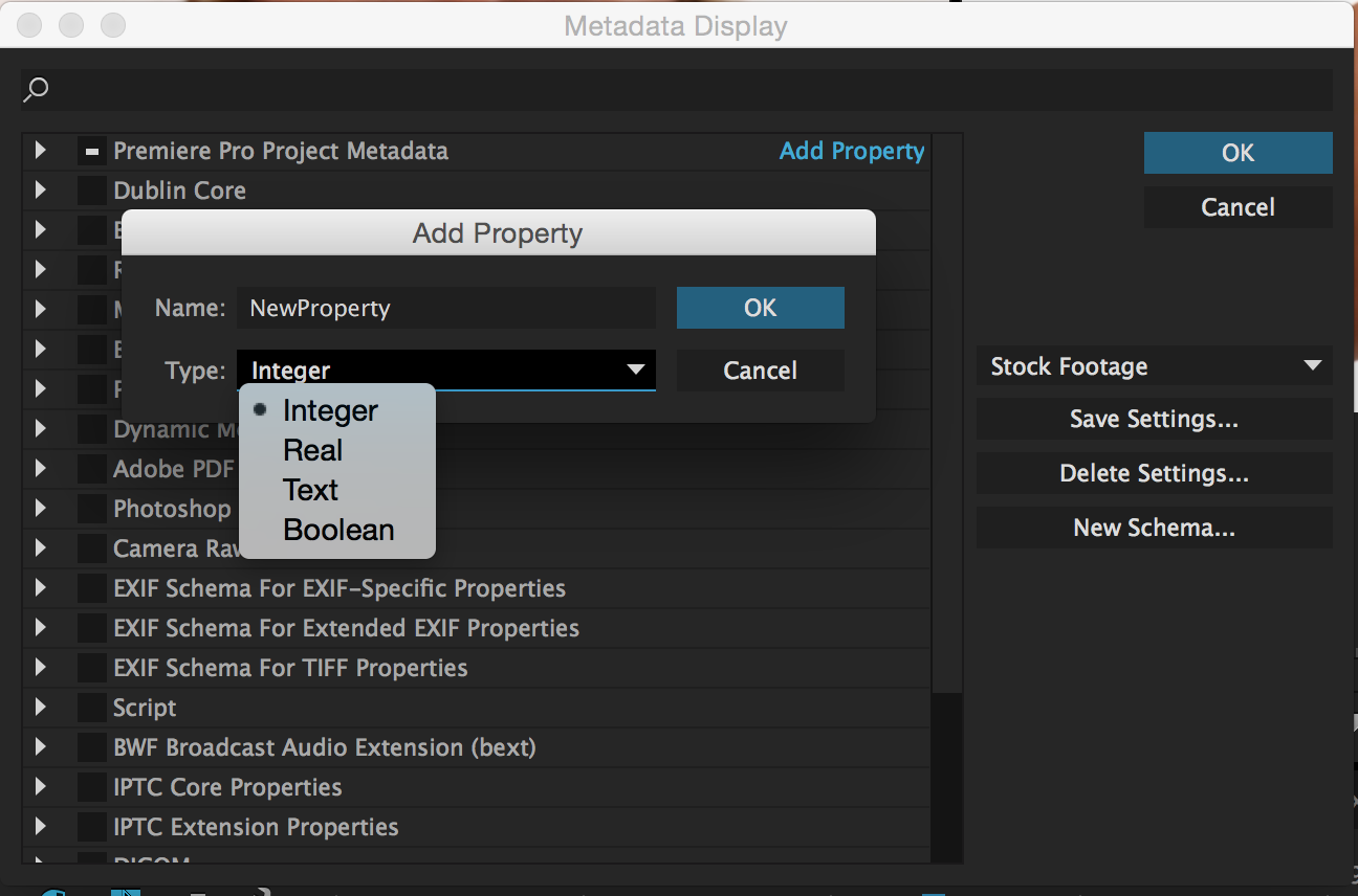 Unleashing the Power of the Premiere Pro Project Panel: Add Property