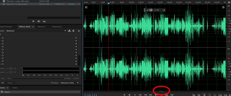 5 Tips for Cleaning Up Audio in Audition: Spectral Frequency Display
