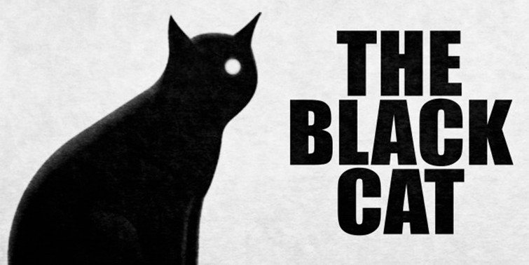 Famous Cats Throughout Film History - The Black Cat