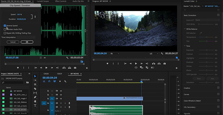 Video Tutorial: The Audio Transition You Need to Start Using — Reverse Clip