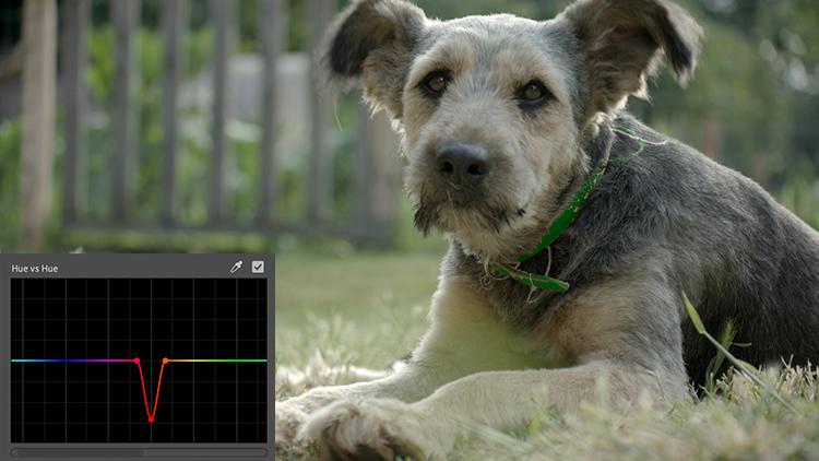 Video Tutorial: Introducing Premiere's New Lumetri Curves — Fine-Tuning
