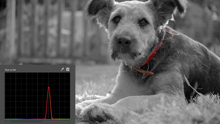 Video Tutorial: Introducing Premiere's New Lumetri Curves — Saturation