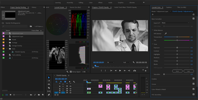 How to Get Better Color Grades Using Opacity Blend Modes — Black and White Adjustment Layers