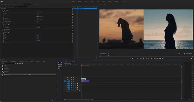 Roundup: 5 Awesome Editing Effects in Adobe Premiere Pro — Crop