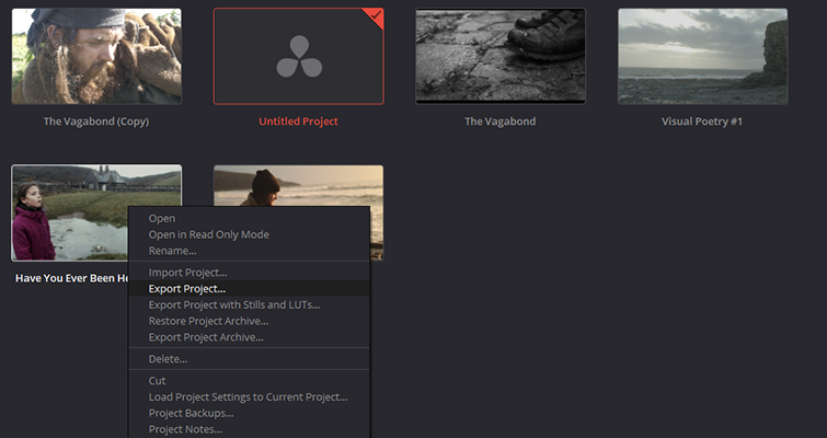 Has Your Editing Software Recently Released a Beta? Hold Off Downloading - Export Project