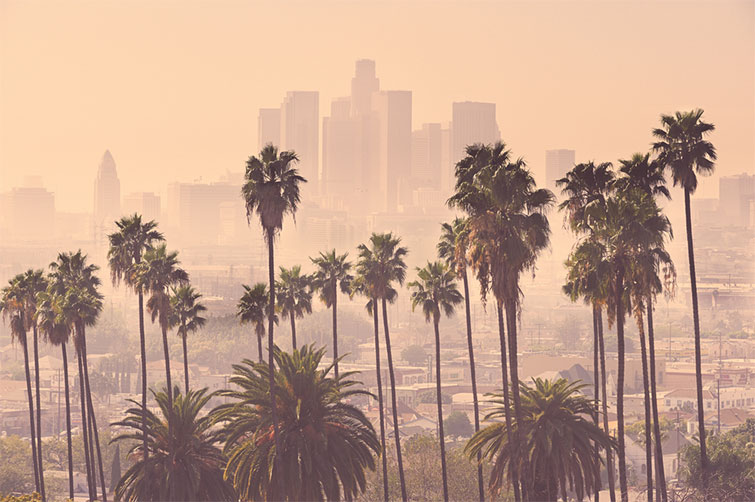 New York vs. Los Angeles: Which City Is Better for Filmmakers? — Los Angeles