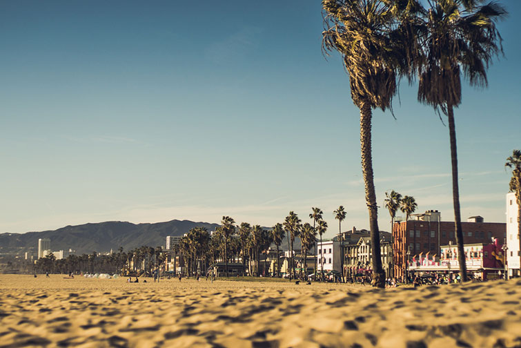 New York vs. Los Angeles: Which City Is Better for Filmmakers? — Venice Beach