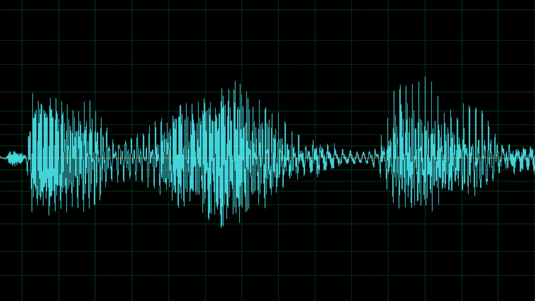 WAV vs. MP3: Why You Need Hi-Res Audio for Your Video — File Formats