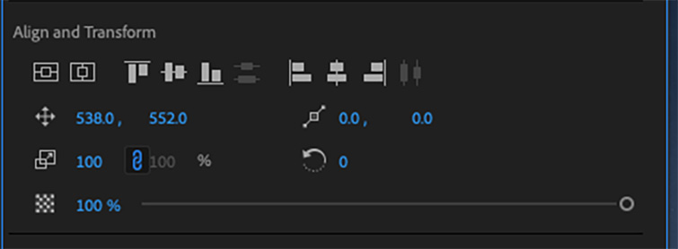 Video Editing 101: How to Add Titles and Subtitles in Premiere Pro — Align and Transform