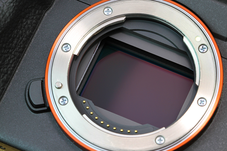 The Mirrorless Camera