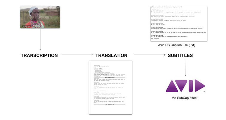 The Subtitling Process