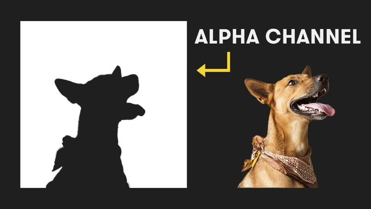 After Effects: Alpha Channel