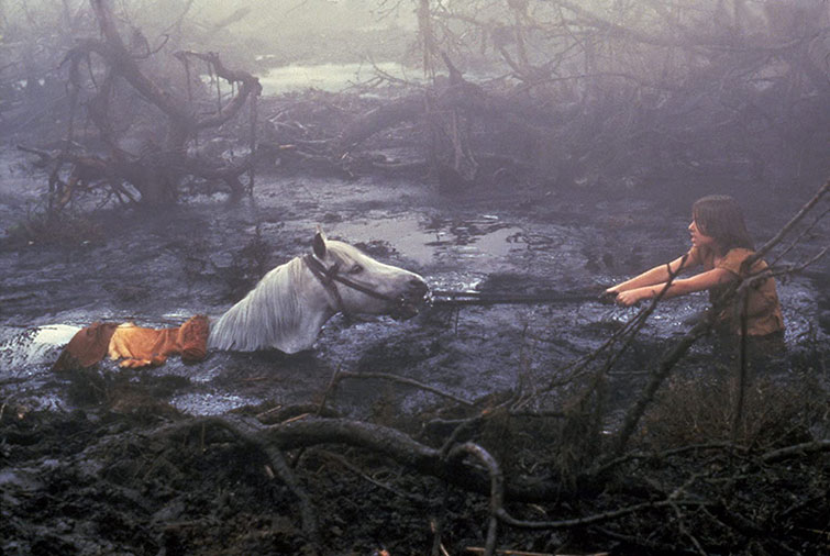 Atreyu and Artax in the Swamp of Sandness in The NeverEnding Story