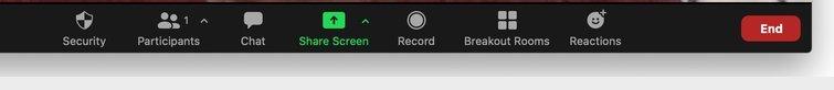 Zoom: Record Button
