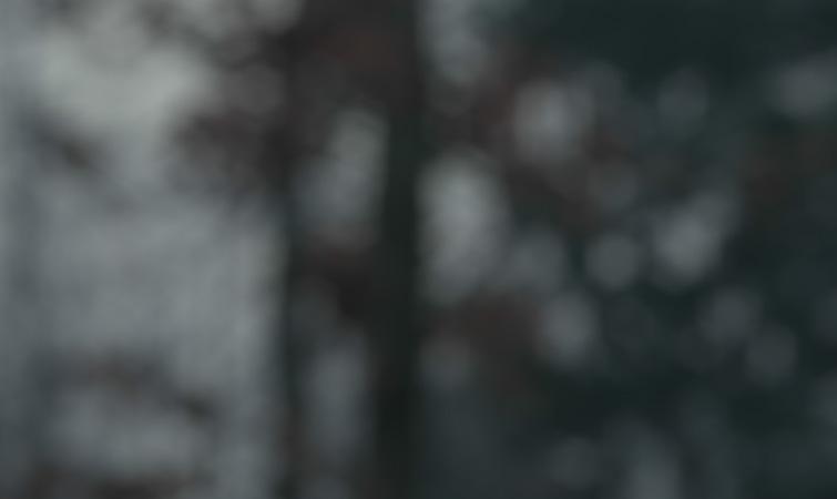 Camera Lens Blur Effect
