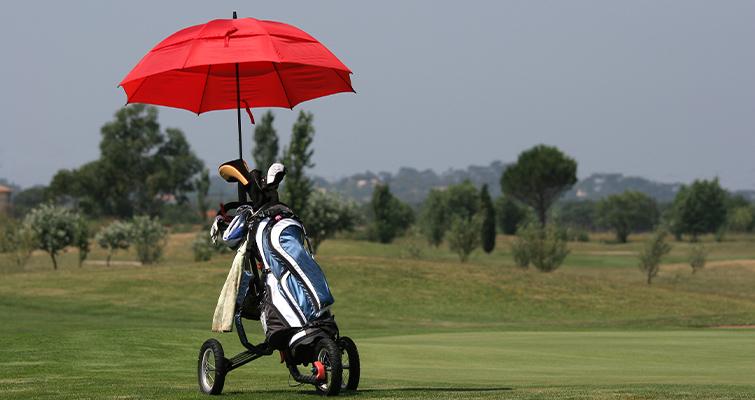Cart Umbrella